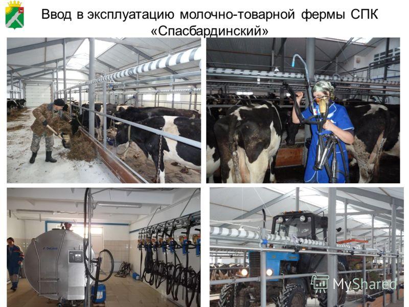 77 Ввод в эксплуатацию молочно-товарной фермы СПК «Спасбардинский»