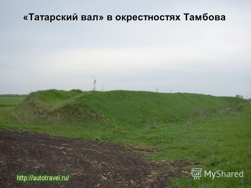 «Татарский вал» в окрестностях Тамбова