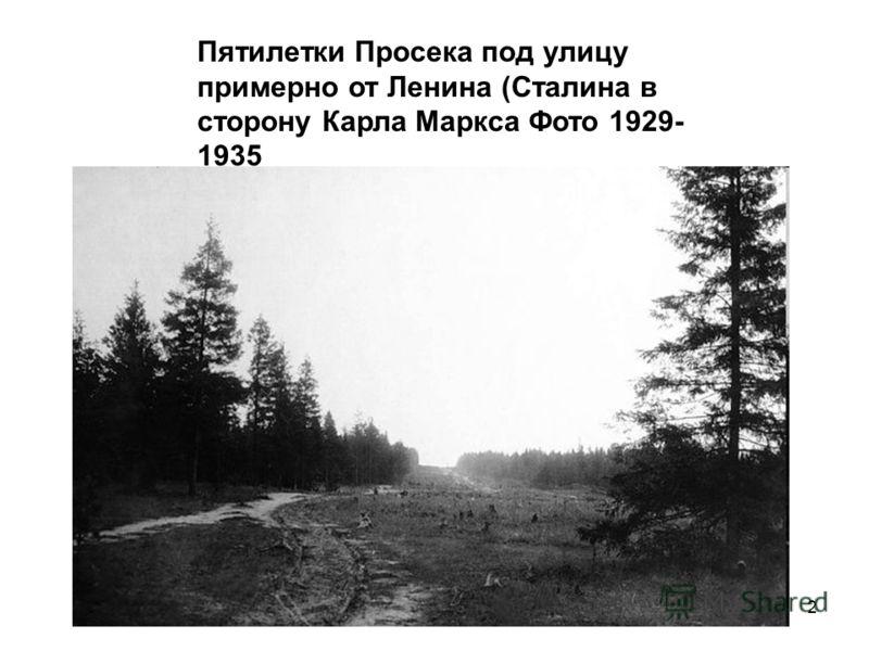 2 Пятилетки Просека под улицу примерно от Ленина (Сталина в сторону Карла Маркса Фото 1929- 1935