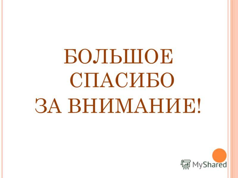 БОЛЬШОЕ СПАСИБО ЗА ВНИМАНИЕ!