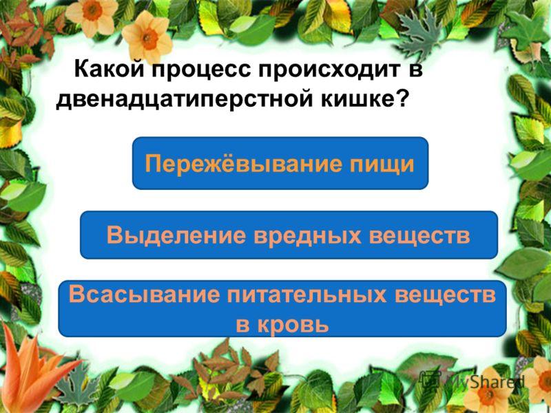 Какой процесс происходит в двенадцатиперстной кишке? Всасывание питательных веществ в кровь Выделение вредных веществ Пережёвывание пищи