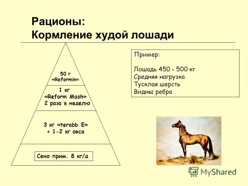 Рационы: Кормление худой лошади Сено прим. 8 кг/д 3 кг «terabb Е» + 1-2 кг овса 1 кг «Reform Mash» 2 раза в неделю 50 г «Reformin» Пример: Лошадь 450 - 500 кг Средняя нагрузка Тусклая шерсть Видны ребра