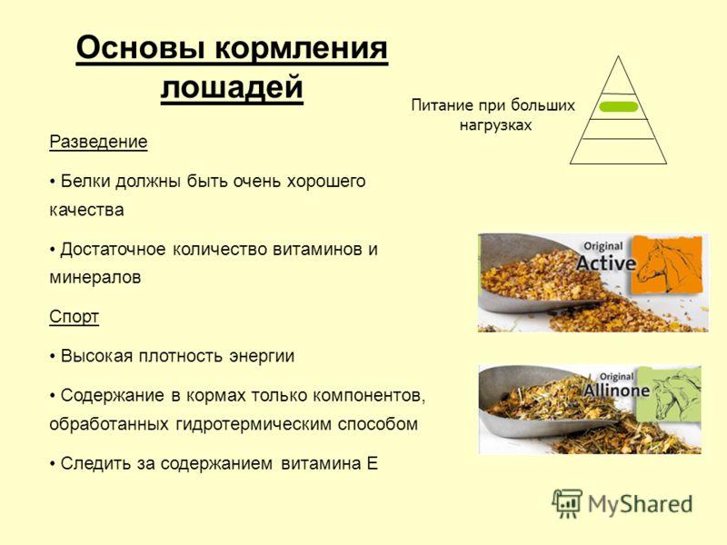 Разведение Белки должны быть очень хорошего качества Достаточное количество витаминов и минералов Спорт Высокая плотность энергии Содержание в кормах только компонентов, обработанных гидротермическим способом Следить за содержанием витамина E Основы