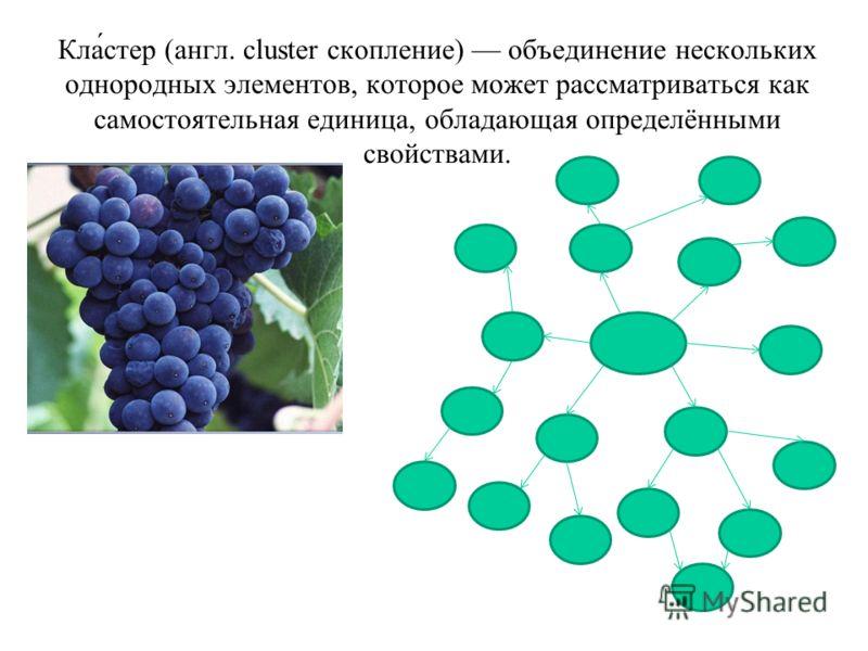 Кла́стер (англ. cluster скопление) объединение нескольких однородных элементов, которое может рассматриваться как самостоятельная единица, обладающая определёнными свойствами.