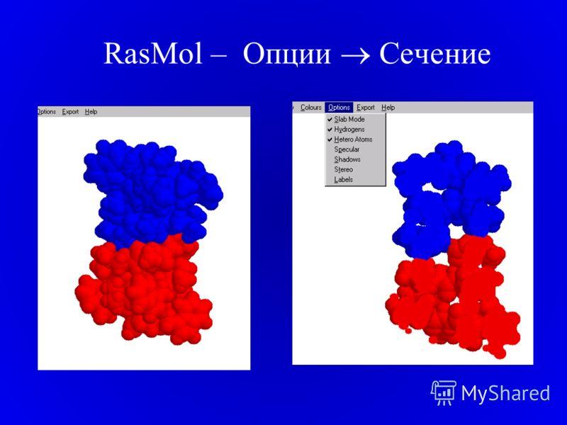 RasMol – Опции Сечение