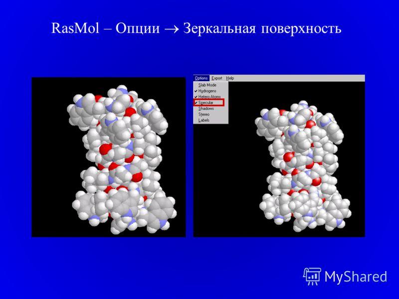 RasMol – Опции Зеркальная поверхность