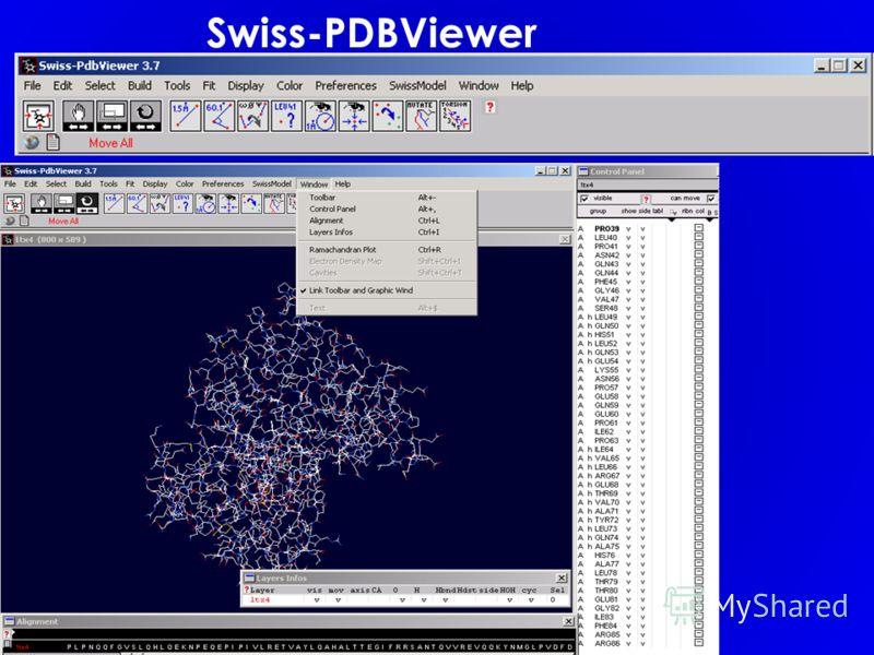 Swiss-PDBViewer
