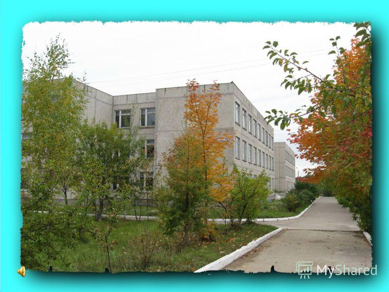 Муниципальное общеобразовательное учреждение «Мелеховская средняя общеобразовательная школа 1» 2010 год