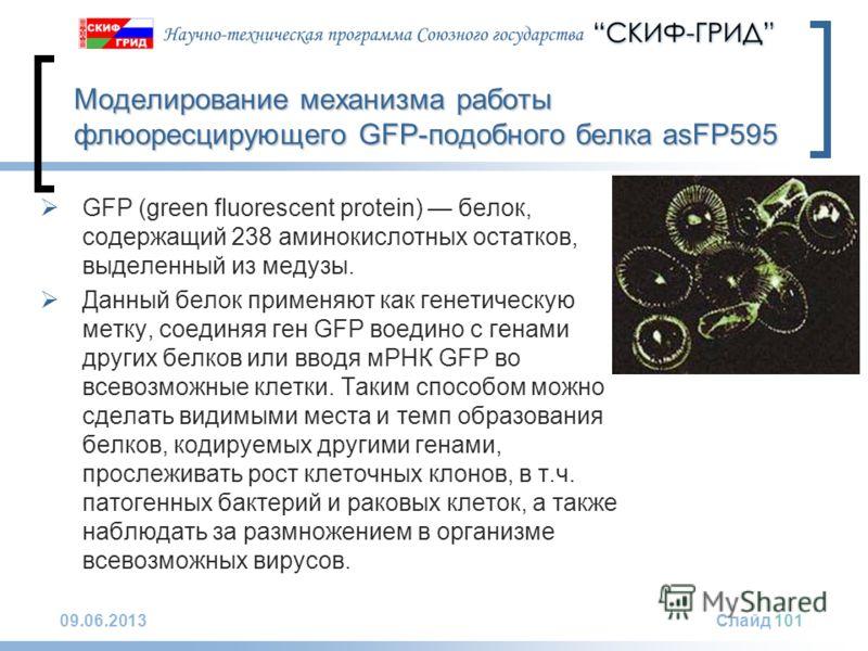 09.06.2013Слайд 101 Моделирование механизма работы флюоресцирующего GFP-подобного белка asFP595 GFP (green fluorescent protein) белок, содержащий 238 аминокислотных остатков, выделенный из медузы. Данный белок применяют как генетическую метку, соедин