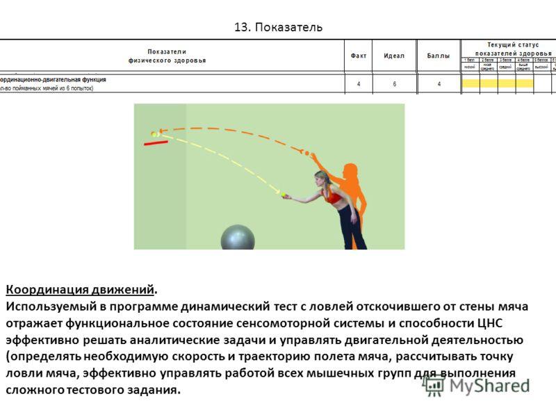 13. Показатель Координация движений. Используемый в программе динамический тест с ловлей отскочившего от стены мяча отражает функциональное состояние сенсомоторной системы и способности ЦНС эффективно решать аналитические задачи и управлять двигатель