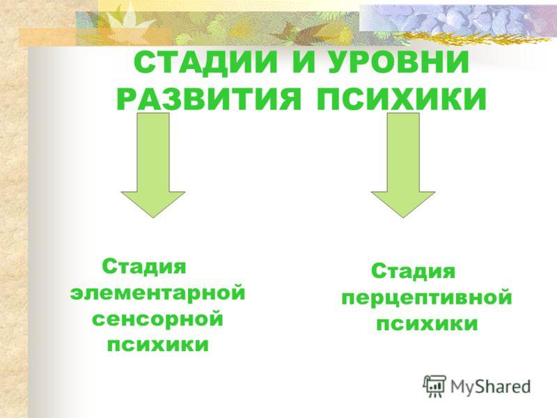 СТАДИИ И УРОВНИ РАЗВИТИЯ ПСИХИКИ Стадия элементарной сенсорной психики Стадия перцептивной психики