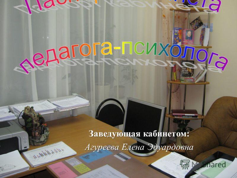 Заведующая кабинетом : Агуреева Елена Эдуардовна