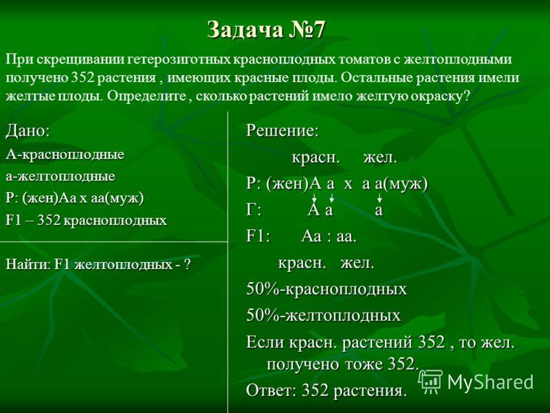 Задача 7 Дано:А-красноплодныеа-желтоплодные Р: (жен)Аа x аа(муж) F1 – 352 красноплодных Найти: F1 желтоплодных - ? Решение: красн. жел. красн. жел. Р: (жен)А а x а а(муж) Г: А а а F1:Аа : аа. красн. жел. красн. жел.50%-красноплодных50%-желтоплодных Е