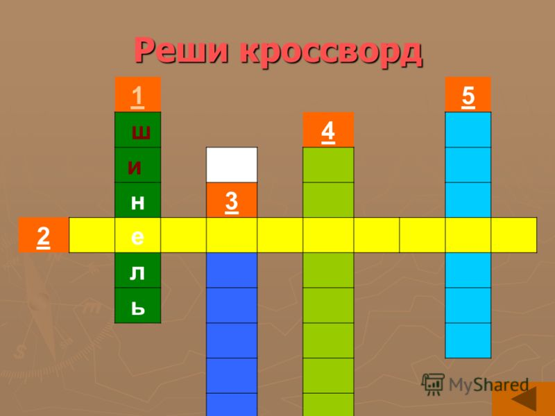 Реши кроссворд 15 ш4 и н3 2 е л ь