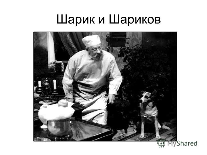 собачье сердце анализ 5 главы Собачье сердце (иллюстрированное) :: Глава 1