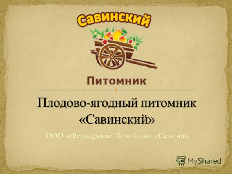 ООО «Фермерское Хозяйство «Селино»