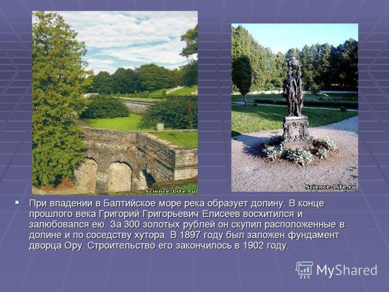 При впадении в Балтийское море река образует долину. В конце прошлого века Григорий Григорьевич Елисеев восхитился и залюбовался ею. За 300 золотых рублей он скупил расположенные в долине и по соседству хутора. В 1897 году был заложен фундамент дворц