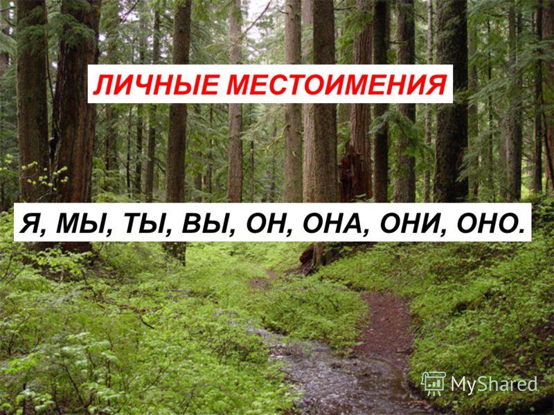 ... люблю русскую берёзу. Недавно... были в берёзовом лесу. Какой Ваня молодец! Сколько... подберёзовиков нашёл. А..., ребята, сколько нашли? Вот выглянуло солнце из-за тучи.... осветило всю землю. На ветку берёзы села ворона.... громко закаркала. На