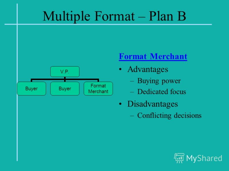 Multiple Format – Plan B Format Merchant Advantages –Buying power –Dedicated focus Disadvantages –Conflicting decisions V.P. Buyer Format Merchant