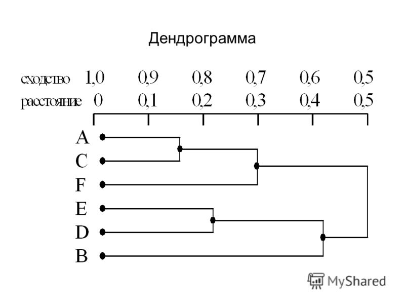 Дендрограмма