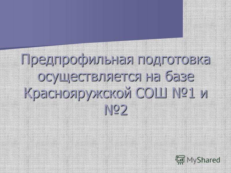 Предпрофильная подготовка осуществляется на базе Краснояружской СОШ 1 и 2