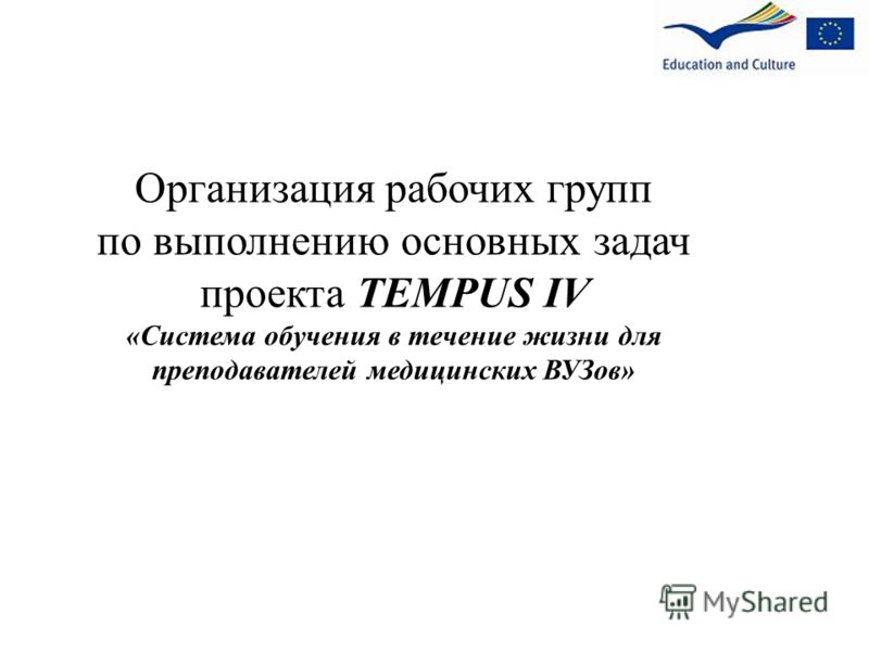 Организация рабочих групп по выполнению основных задач проекта TEMPUS IV «Система обучения в течение жизни для преподавателей медицинских ВУЗов»