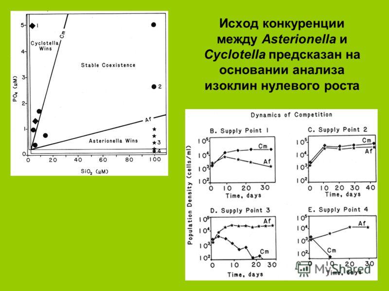 Исход конкуренции между Asterionella и Cyclotella предсказан на основании анализа изоклин нулевого роста