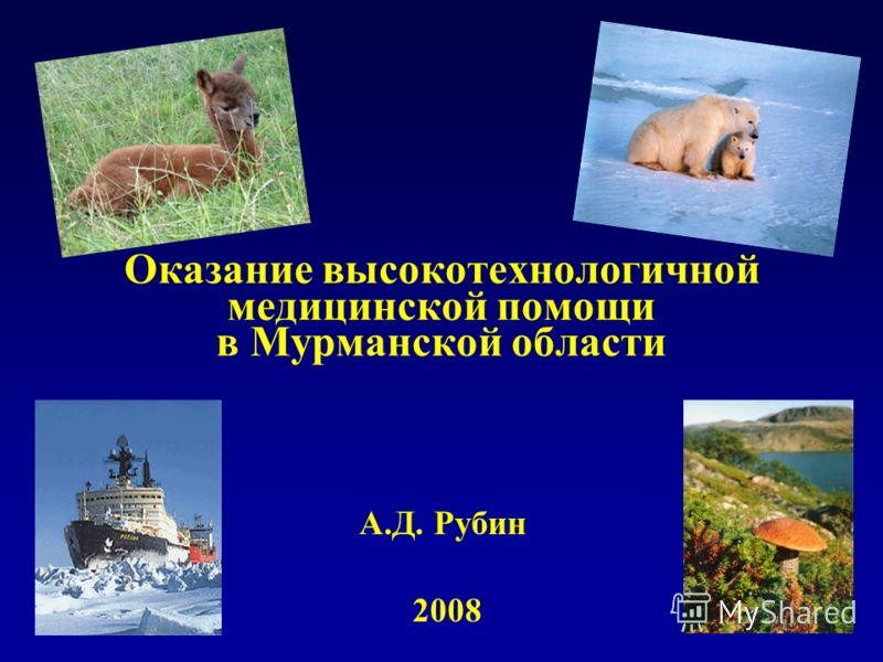 Оказание высокотехнологичной медицинской помощи в Мурманской области А.Д. Рубин 2008