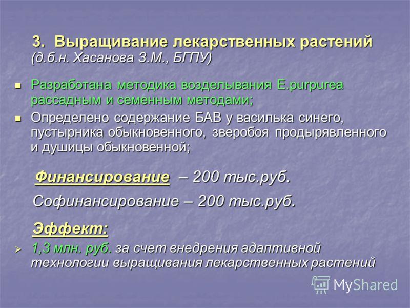 3. Выращивание лекарственных растений (д.б.н. Хасанова З.М., БГПУ) 3. Выращивание лекарственных растений (д.б.н. Хасанова З.М., БГПУ) Разработана методика возделывания E.purpurea рассадным и семенным методами; Разработана методика возделывания E.purp