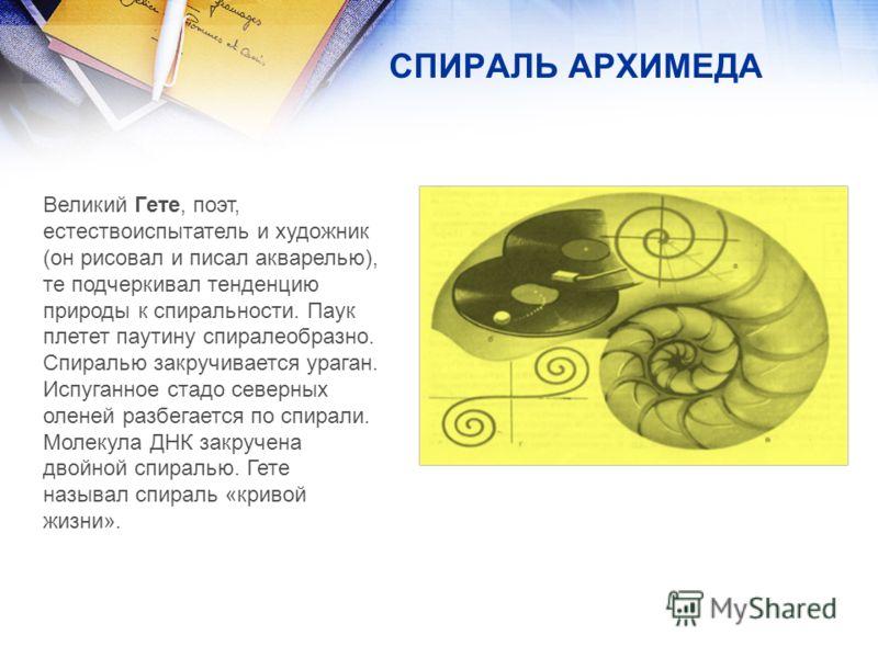 Великий Гете, поэт, естествоиспытатель и художник (он рисовал и писал акварелью), те подчеркивал тенденцию природы к спиральности. Паук плетет паутину спиралеобразно. Спиралью закручивается ураган. Испуганное стадо северных оленей разбегается по спир
