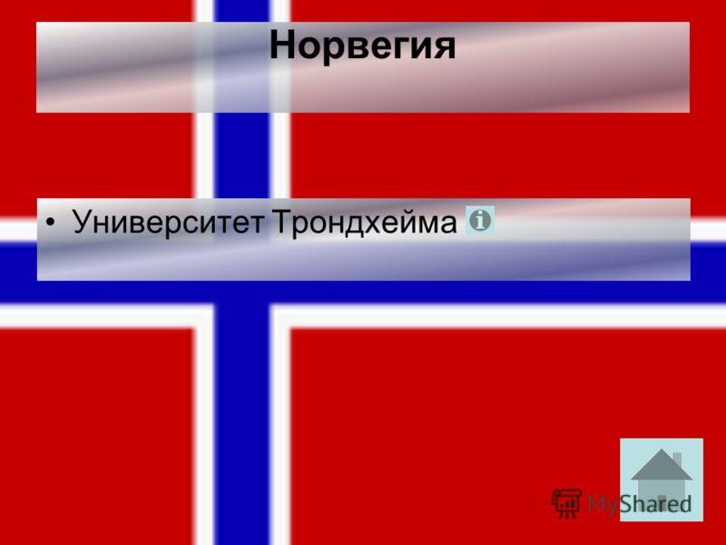 Норвегия Университет Трондхейма