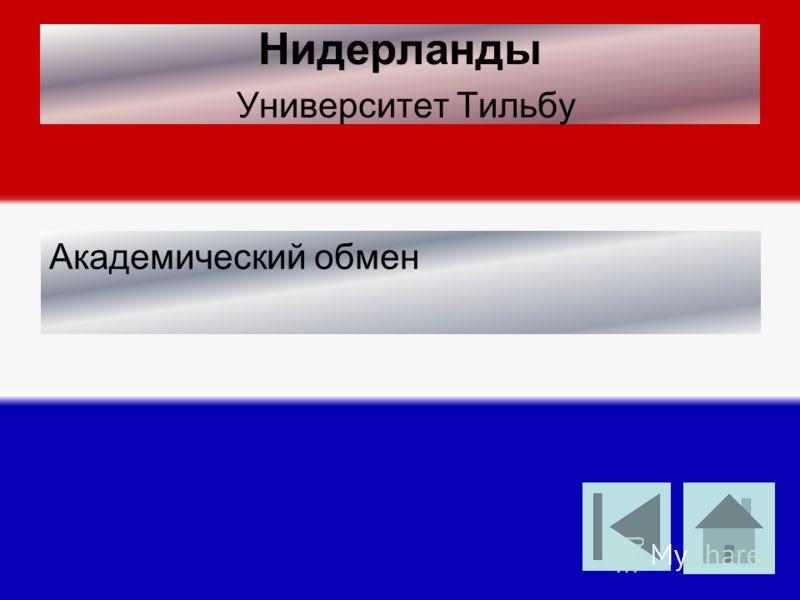 Нидерланды Университет Тильбу Академический обмен