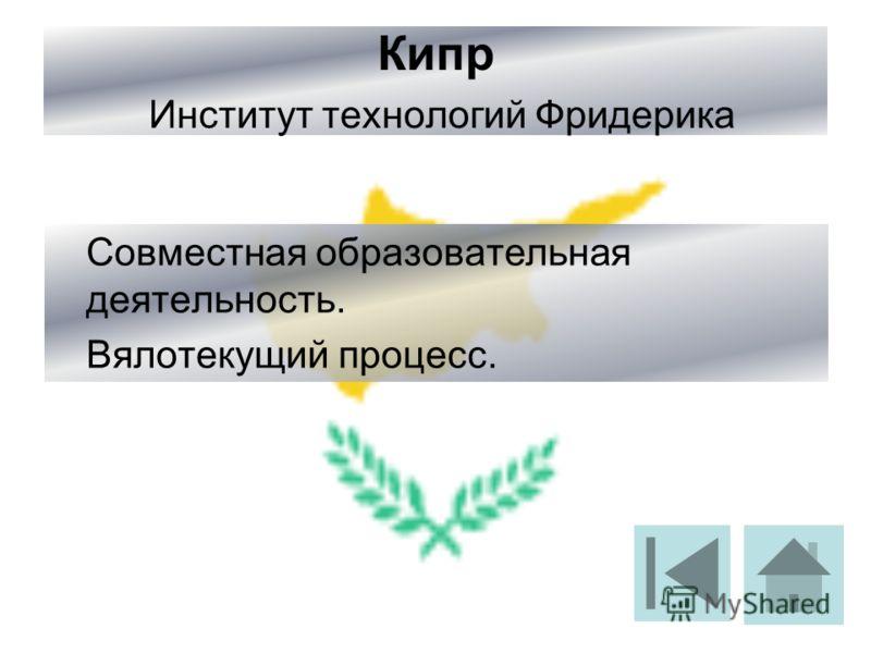 Кипр Институт технологий Фридерика Совместная образовательная деятельность. Вялотекущий процесс.