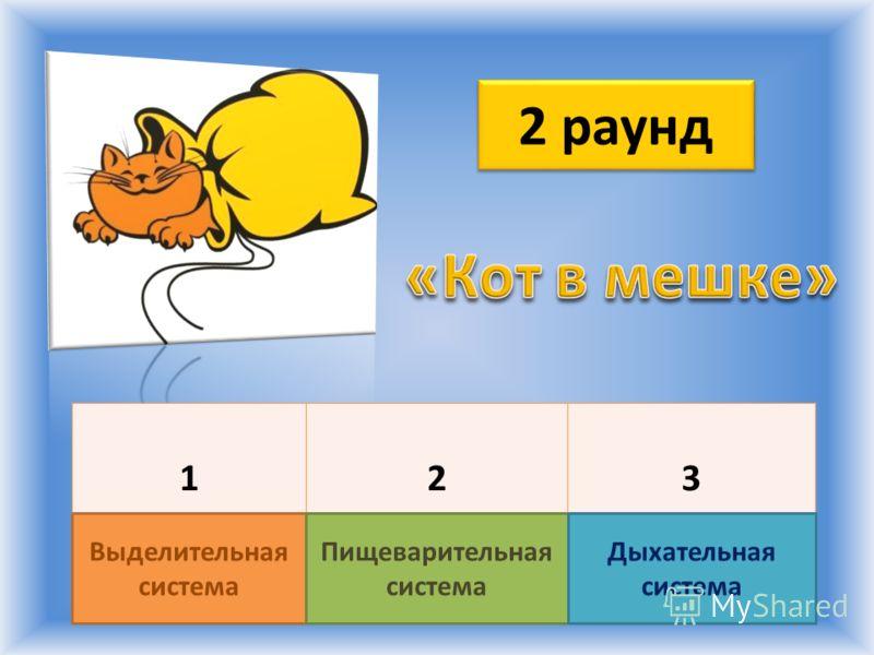 2 раунд 123 Выделительная система Пищеварительная система Дыхательная система