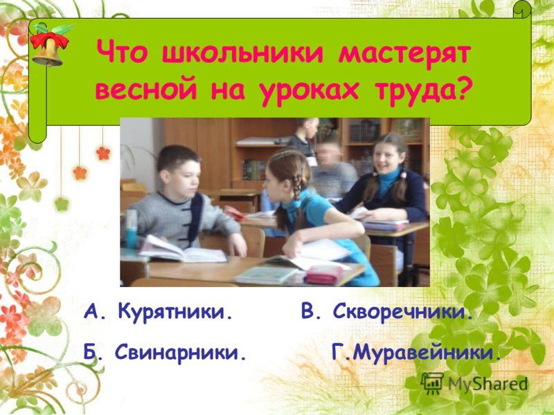 А. Курятники. В. Скворечники. Б. Свинарники. Г.Муравейники. Что школьники мастерят весной на уроках труда?