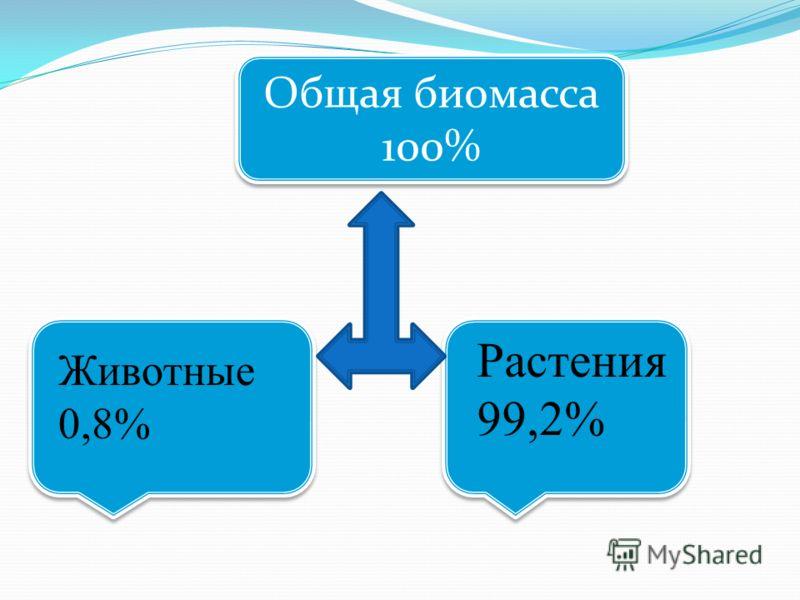 Общая биомасса 100% Общая биомасса 100% Растения 99,2% Животные 0,8%