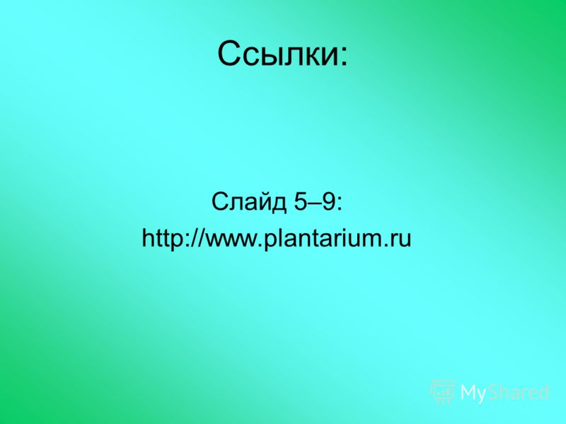 Ссылки: Слайд 5–9: http://www.plantarium.ru
