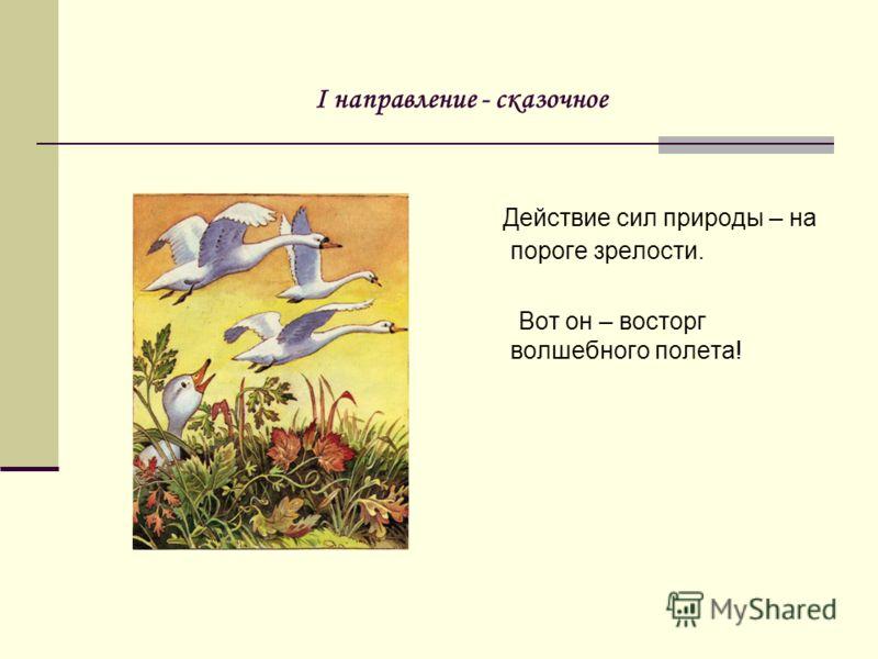 I направление - сказочное Действие сил природы – на пороге зрелости. Вот он – восторг волшебного полета!