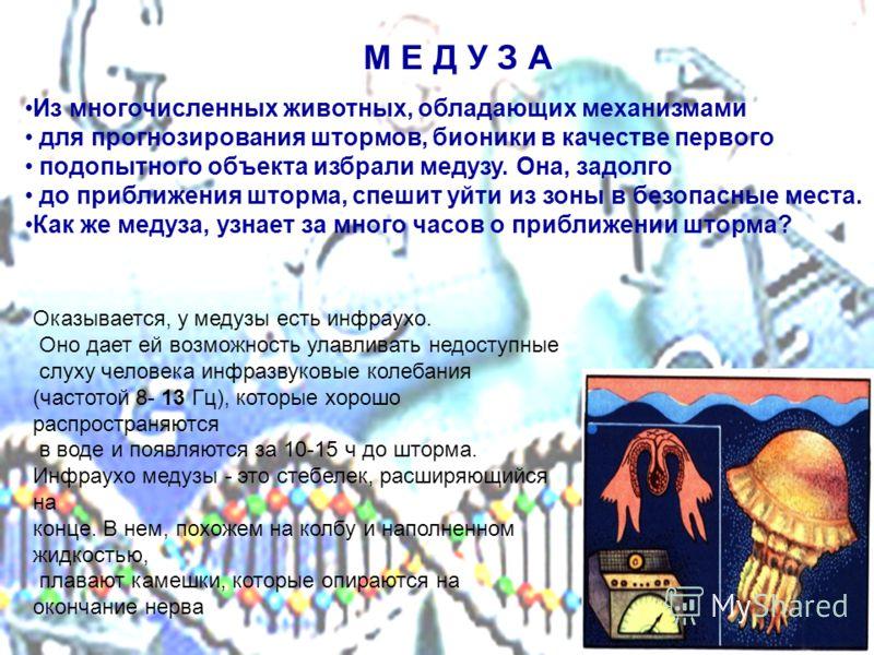 Из многочисленных животных, обладающих механизмами для прогнозирования штормов, бионики в качестве первого подопытного объекта избрали медузу. Она, задолго до приближения шторма, спешит уйти из зоны в безопасные места. Как же медуза, узнает за много
