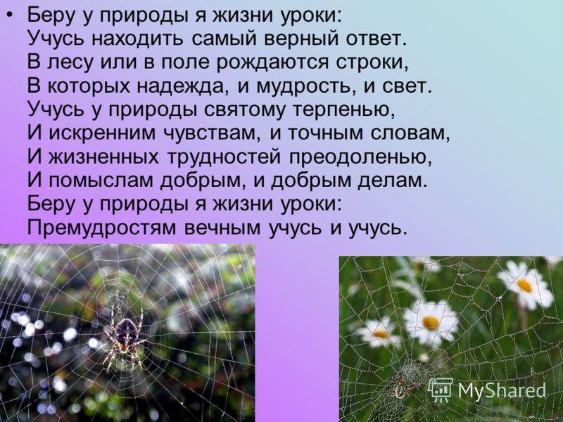 Беру у природы я жизни уроки: Учусь находить самый верный ответ. В лесу или в поле рождаются строки, В которых надежда, и мудрость, и свет. Учусь у природы святому терпенью, И искренним чувствам, и точным словам, И жизненных трудностей преодоленью, И