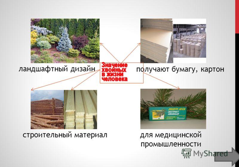 для медицинской промышленности строительный материал получают бумагу, картон ландшафтный дизайн