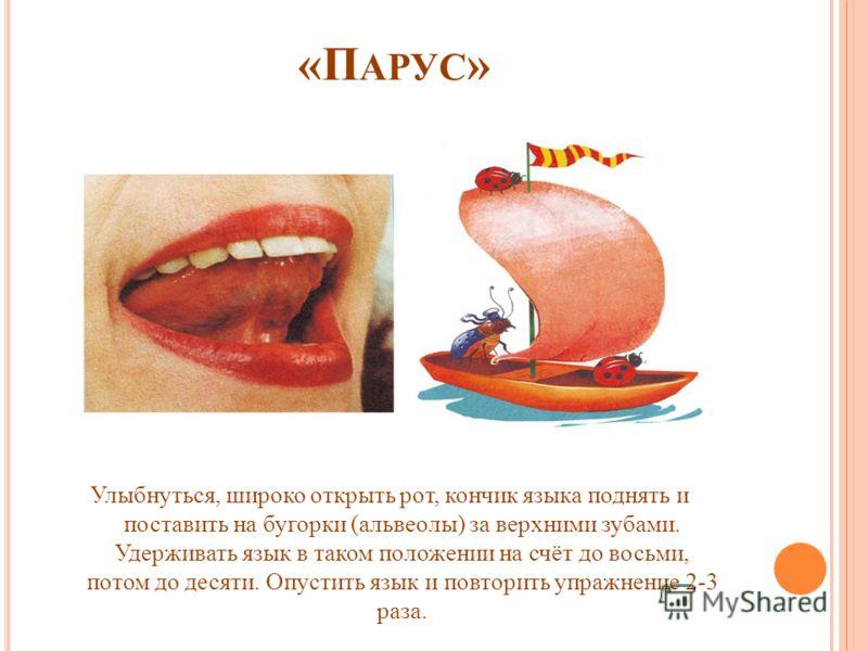 «П АРУС » Улыбнуться, широко открыть рот, кончик языка поднять и поставить на бугорки (альвеолы) за верхними зубами. Удерживать язык в таком положении на счёт до восьми, потом до десяти. Опустить язык и повторить упражнение 2-3 раза.