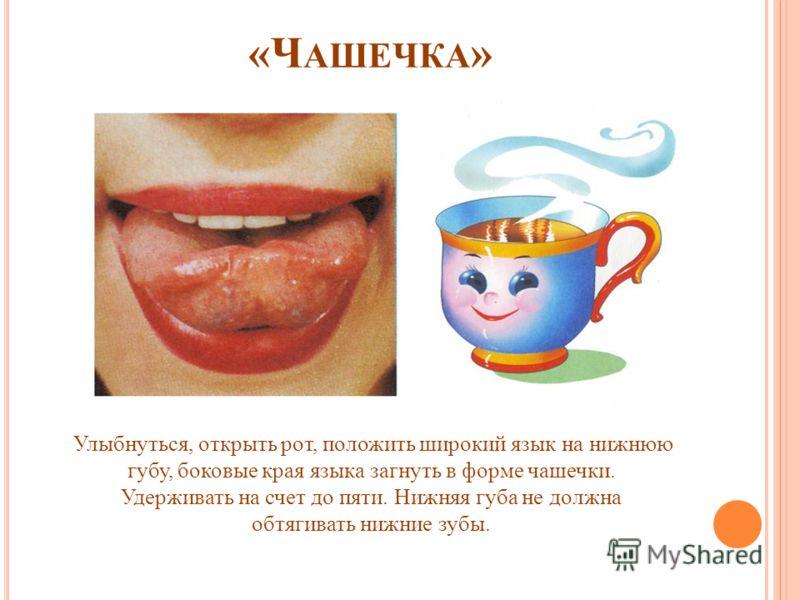 «Ч АШЕЧКА » Улыбнуться, открыть рот, положить широкий язык на нижнюю губу, боковые края языка загнуть в форме чашечки. Удерживать на счет до пяти. Нижняя губа не должна обтягивать нижние зубы.