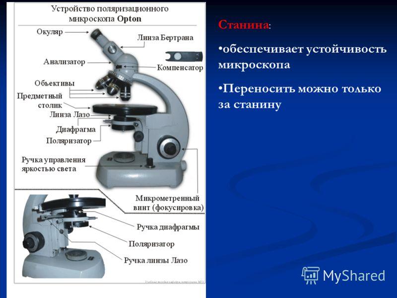 Станина : обеспечивает устойчивость микроскопа Переносить можно только за станину