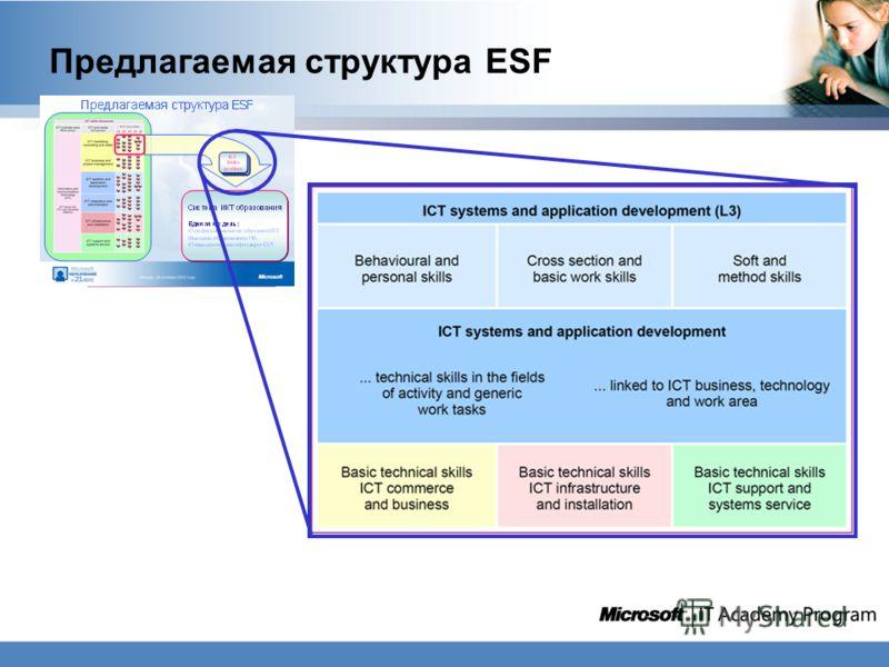 Предлагаемая структура ESF