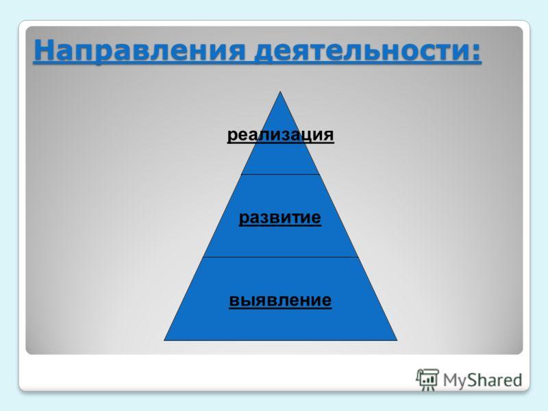 Направления деятельности: реализация развитие выявление