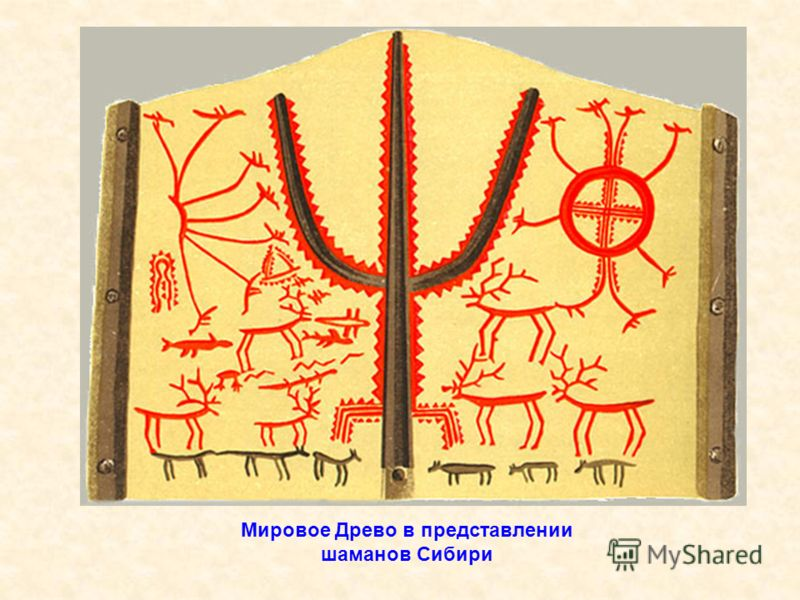 Мировое Древо в представлении шаманов Сибири