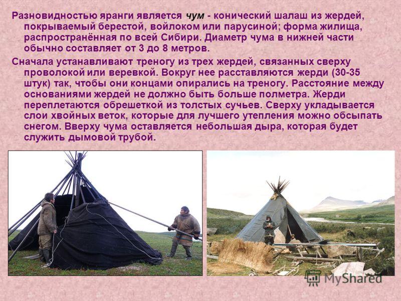 Разновидностью яранги является чум - конический шалаш из жердей, покрываемый берестой, войлоком или парусиной; форма жилища, распространённая по всей Сибири. Диаметр чума в нижней части обычно составляет от 3 до 8 метров. Сначала устанавливают треног