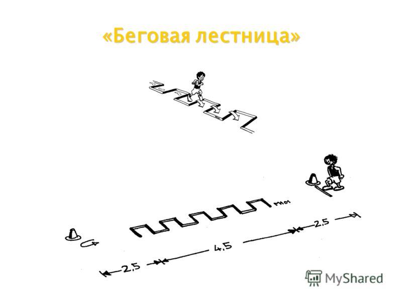 «Беговая лестница»