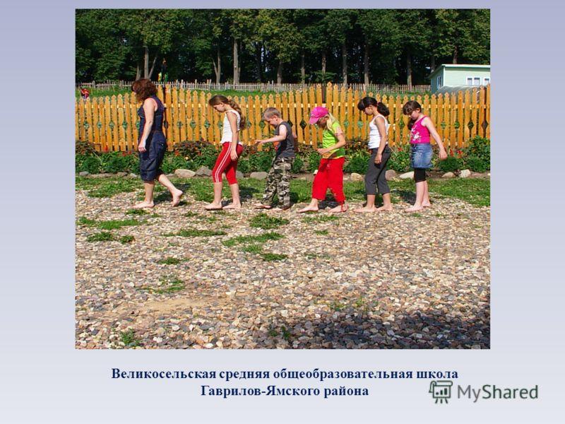 Великосельская средняя общеобразовательная школа Гаврилов-Ямского района